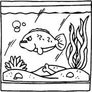 acquari pesciolini immagine da colorare n. 25388