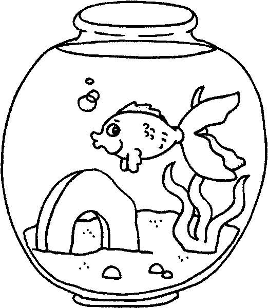 acquari pesciolini immagine da colorare n. 28514