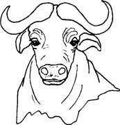 immagine animale con corna da colorare