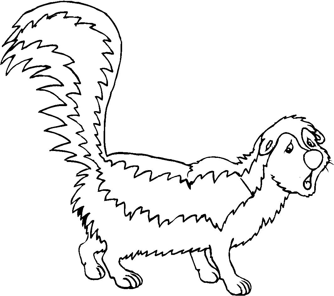 Immagine Da Colorare Animali Foresta Cartoni Da Colorare
