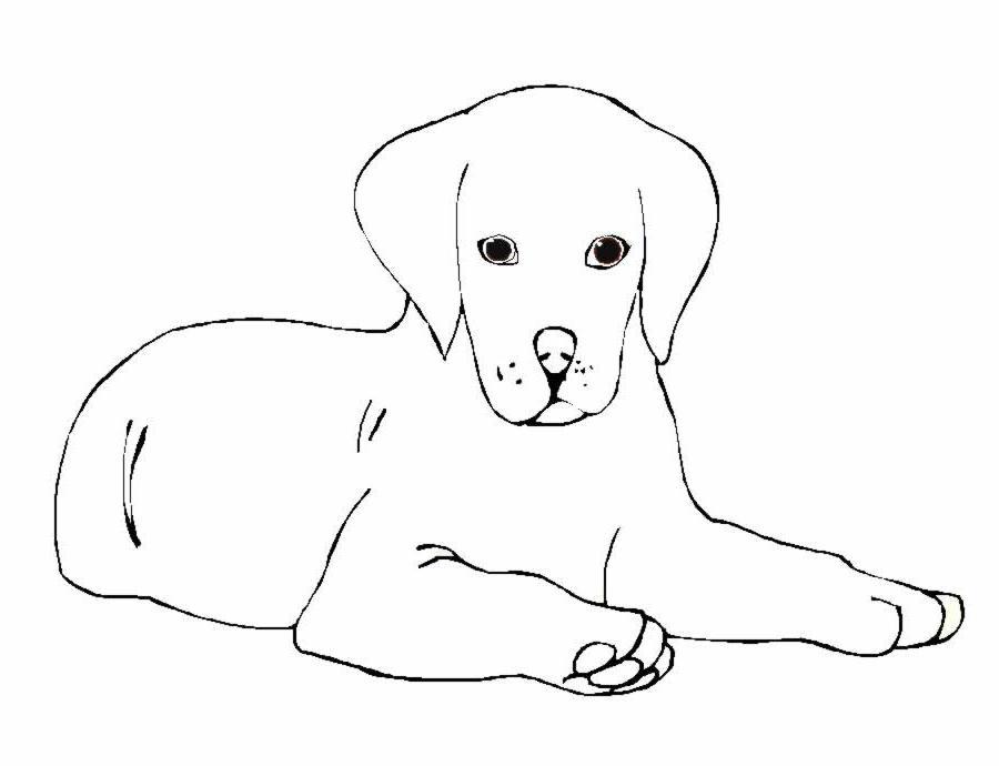 Ben noto immagini da colorare cani - Pagina 2 di 4 - cartoni da colorare OB22