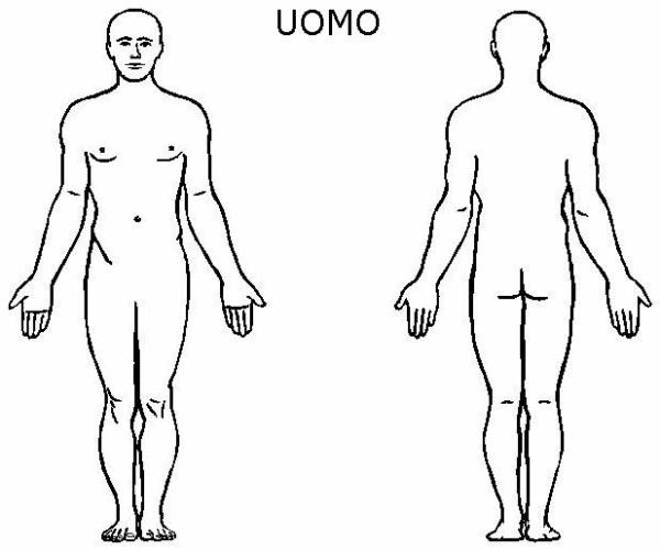 Corpo Umano Immagine Da Colorare N 17816 Cartoni Da Colorare
