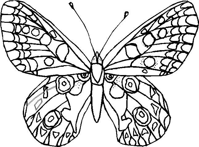 Farfalle Immagine Da Colorare N 18990 Cartoni Da Colorare