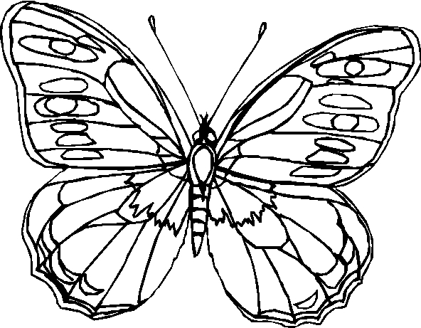Farfalle immagine da colorare n 25052 cartoni da colorare for Immagini farfalle da ritagliare