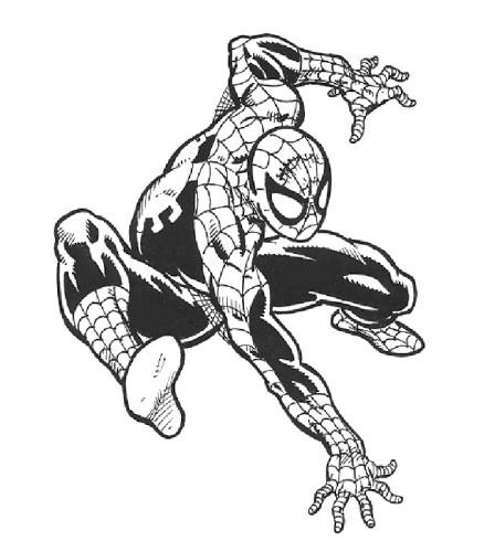 Spiderman Immagine Da Colorare N 14377 Cartoni Da Colorare