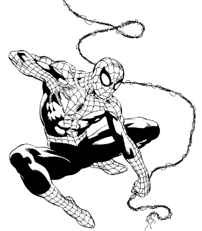Spiderman immagine da colorare n 26442 cartoni da colorare Disegni spiderman da colorare gratis